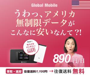≪アメリカWiFi≫申込