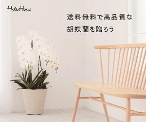 ひとはなお祝い胡蝶蘭値段