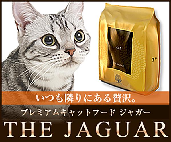 英国産こだわり品質のキャットフード【ジャガー】