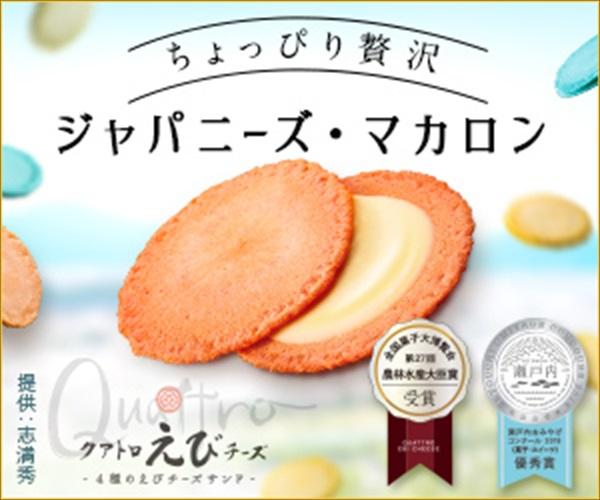 新感覚えびせん★ジャパニーズマカロン【クアトロえびチーズ】商品モニター