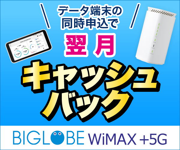【BIGLOBE WiMAX 2+】