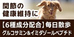 犬用 毎日散歩 グルコサミン&イミダゾールペプチド